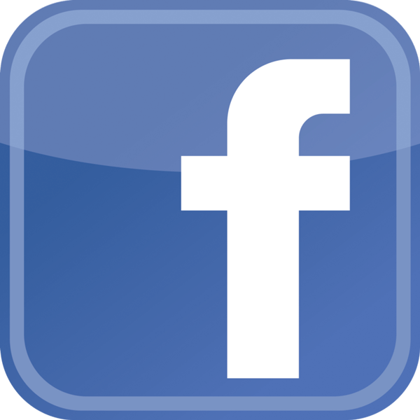 Facebook video downloader software online